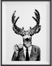 Plakat Hrabia Albert - kreska