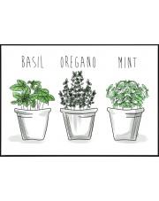 Plakat do skandynawskiej kuchni Green Herbs