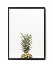 Plakat ANANAS (1) - FOX ART STUDIO