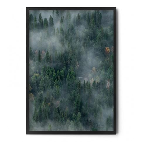 Fotografia, na której jest Plakat LAS WE MGLE cz.2 - FOX ART STUDIO