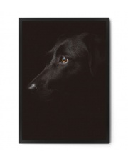 Plakat BLACK DOG - FOX ART STUDIO