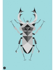 Plakat Jelonek Rogacz niebieski - Kinkallo