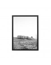 Obrazek w ramie NATURA / B&W (30x40) - Bloomingville