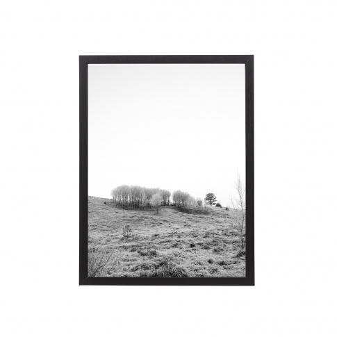 Fotografia, na której jest Obrazek w ramie NATURA / B&W (30x40) - Bloomingville