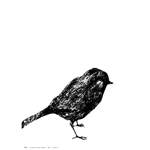 Fotografia, na której jest Plakat A3 LITTLE BIRD - Miiko