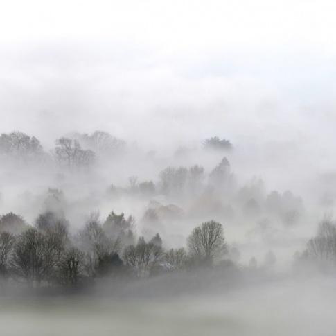 Fotografia, na której jest Fototapeta REBEL WALLS | Morning Fog