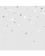 Fototapeta REBEL WALLS   Stargazing, Dusk