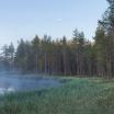 Fotografia, na której jest Fototapeta REBEL WALLS | SCANDINAVIA Forest Lake