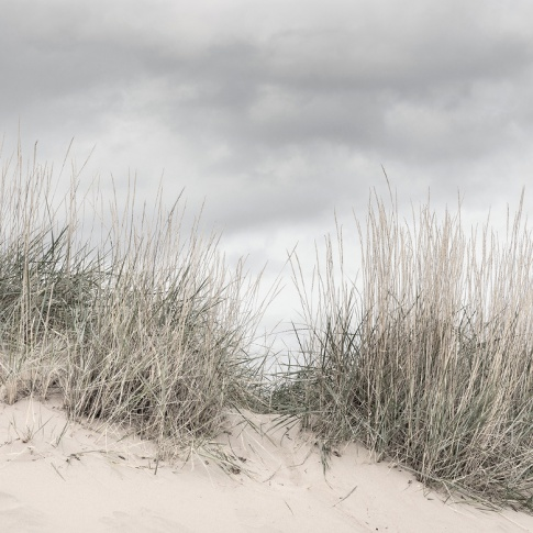 Fotografia, na której jest Fototapeta REBEL WALLS   SCANDINAVIA Pale Shore