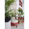Fotografia, na której jest Kosz dekoracyjny Mini Tricolor - Lorena Canals