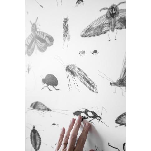 Fotografia, na której jest Plakat owad Bug World