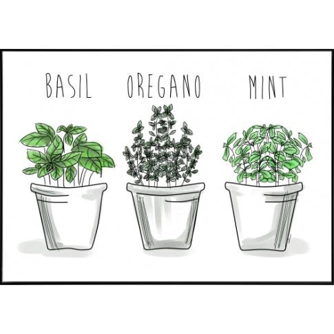 Fotografia, na której jest Plakat do skandynawskiej kuchni Green Herbs
