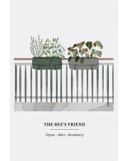 Zieleń na balkonie – pszczoły, zioła i truskawki!